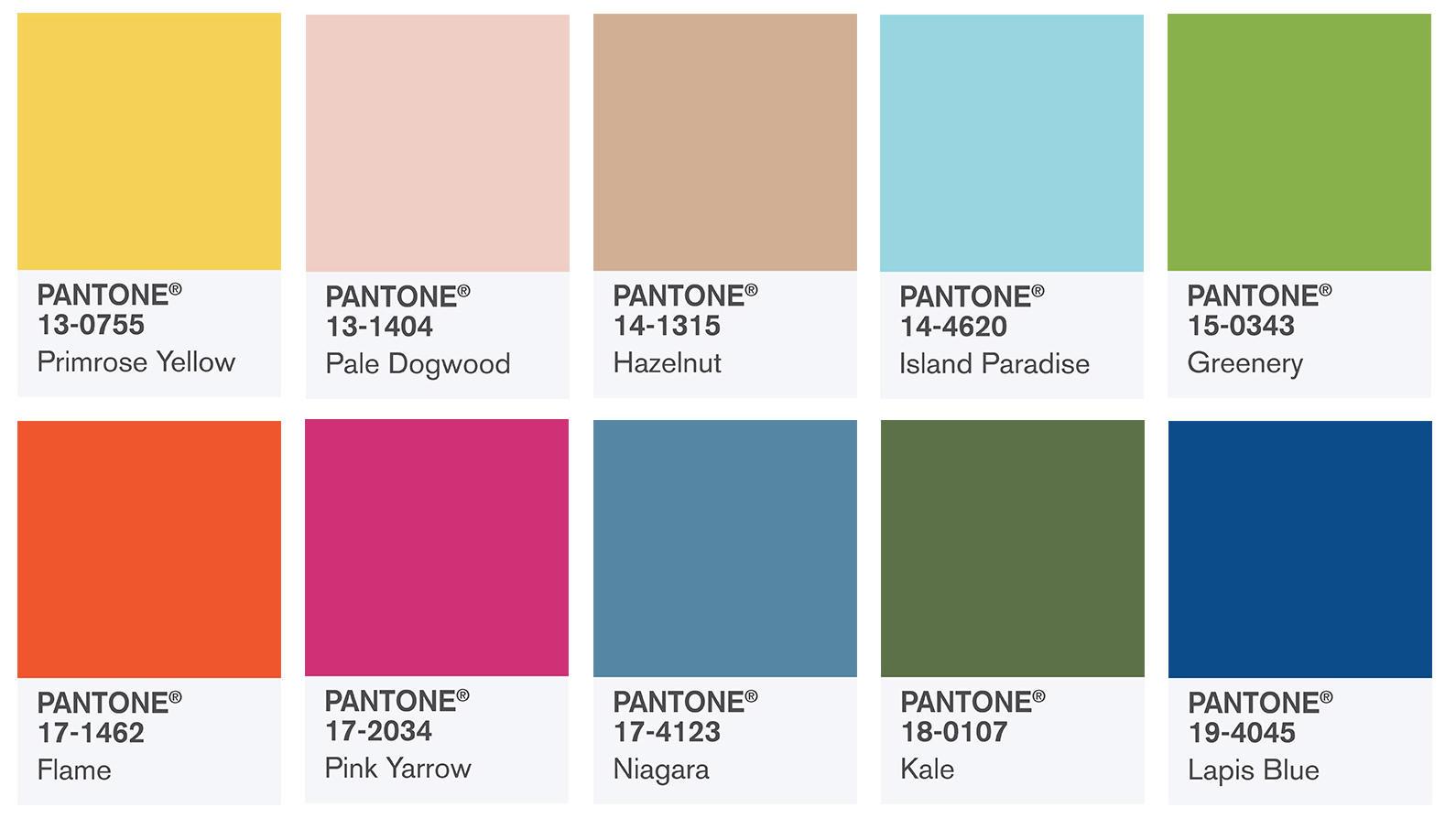 Pantonefarben Was Ist Das Brainfire Kreativmanufaktur
